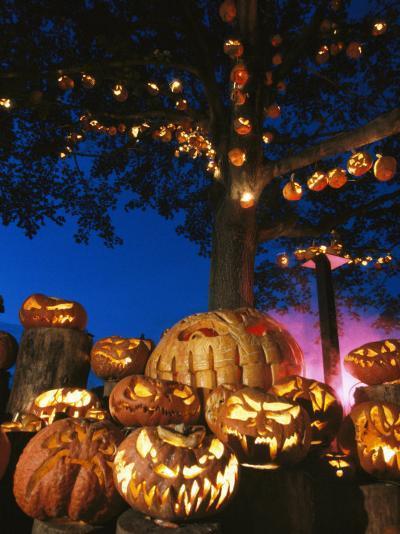 Grinning Lit Jack-O-Lanterns Surrounding and Filling a Tree-Richard Nowitz-Photographic Print