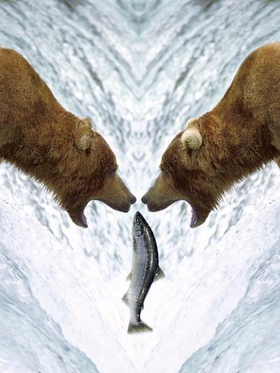Grizzly Bears Catching Fish-DLILLC-Photographic Print