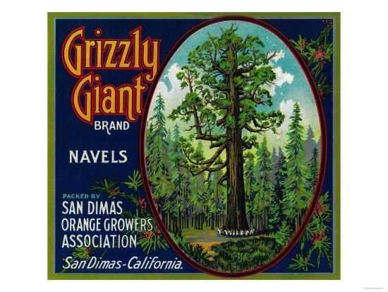Grizzly Giant Orange Label - San Dimas, CA-Lantern Press-Art Print