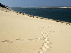 Dune Du Pyla, Bay of Arcachon, Cote D'Argent, Gironde, Aquitaine, France by Groenendijk Peter