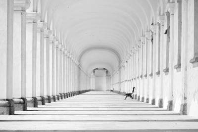 Long Baroque Colonnade in Black and White Tone by grondetphoto