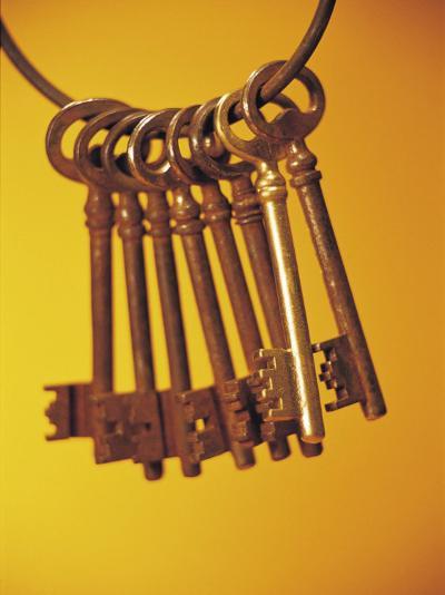 Group of Brass Keys on Keyring--Photographic Print