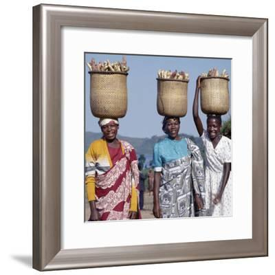 Group of Cheerful Women Carry Sweet Potatoes to Market in Traditional Split-Bamboo Baskets-Nigel Pavitt-Framed Photographic Print