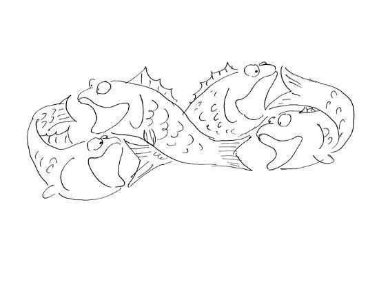 Group of fish chasing each others tail's. - Cartoon-Arnie Levin-Premium Giclee Print