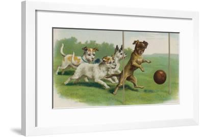 Group of Four Dogs Play a Lively Game of Football One of Them is About to Score a Goal--Framed Giclee Print