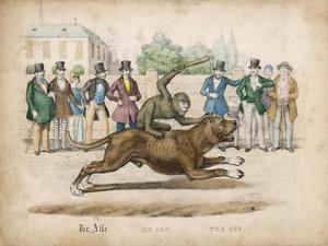 Group of Gentlemen Watch a Monkey Riding a Dog