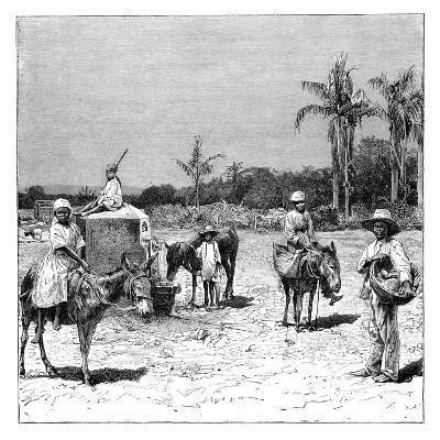 Group of Haitians, C1890--Giclee Print
