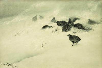 Grouse in a Snow Storm, 1890-Bruno Andreas Liljefors-Giclee Print