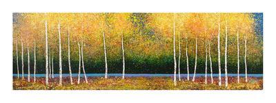 https://imgc.artprintimages.com/img/print/grove-panorama_u-l-f7likw0.jpg?p=0