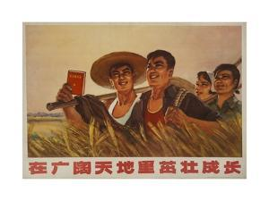 Grow Strongly under the Broad Sky and Earth, Chinese Cultural Revolution