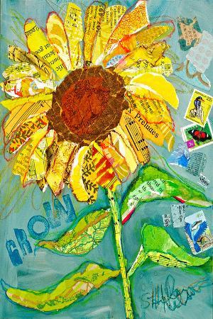 grow-sunflower