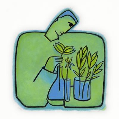 Growing Plants Experiments-Marie Bertrand-Photographic Print