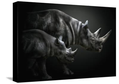 Growing Up-Pedro Jarque-Stretched Canvas Print