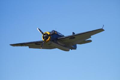 Grumman Avenger, Warbirds over Wanaka, War Plane, New Zealand-David Wall-Photographic Print