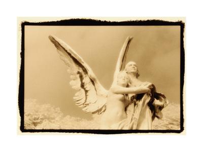 https://imgc.artprintimages.com/img/print/guardian-angel-luxembourg-gardens-paris_u-l-q10w7lr0.jpg?p=0