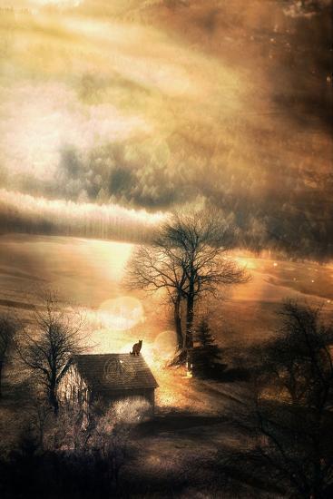 Guardian Of The Old Ways-Alexandra Stanek-Photographic Print