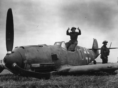 Guarding Plane--Photographic Print