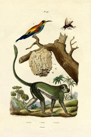Guenon, 1833-39--Giclee Print