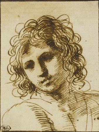 Etude d'une tête de jeune homme vue de face et penchée à gauche