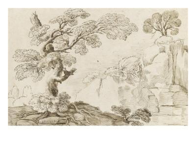 Paysage avec un arbre aux racines découvertes dominant une gorge
