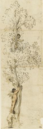 Un amour dans un arbre sur lequel monte un autre amour, aidé d'un enfant