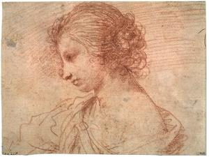 'Breast portrait of a young female', 17th century by Guercino