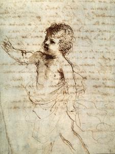 Child's Figure in Drapery, 17th Century by Guercino