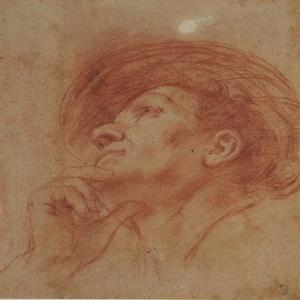 Study for the Head of the Prophet Haggai by Guercino