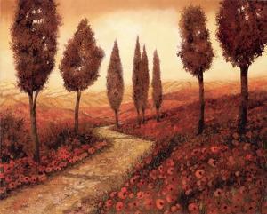 Strada Tra I Papaveri by Guido Borelli