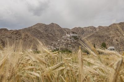 Chemde Monastery, near Karu by Guido Cozzi