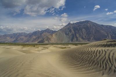 Sand Dunes along Shyok Valley by Guido Cozzi