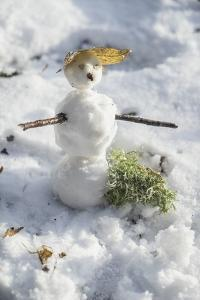 Snowman at Vallombrosa by Guido Cozzi