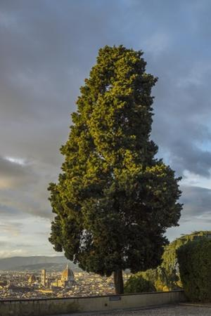 View of the Town from San Miniato Al Monte by Guido Cozzi