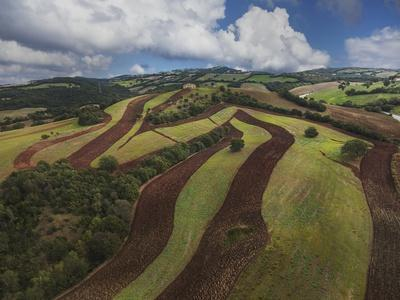 Working a Field near Manciano, Air View by Drone