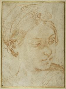 Young Woman's Head, Turned to Glance over Her Left Shoulder by Guido Reni
