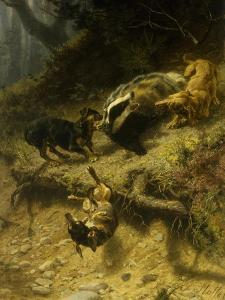 Dachshunds on a Badger, 1882 by Guido von Maffei
