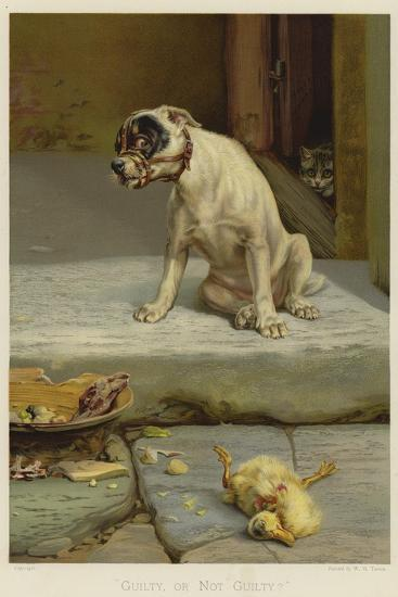 Guilty, or Not Guilty?-William Henry Hamilton Trood-Giclee Print