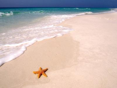 Gulf Island National Seashore, Santa Rosa Island, Florida-Maresa Pryor-Photographic Print