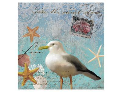 Gull Beach II-Rick Novak-Art Print