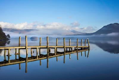 Gull on High Brandelhow Jetty, Derwentwater, the Lake District National Park, England-Tony Allaker-Photographic Print