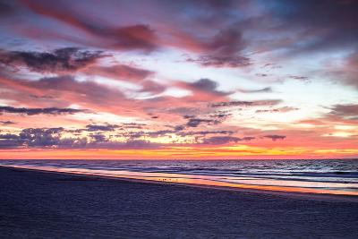 Gulls on the Shore I-Alan Hausenflock-Photo