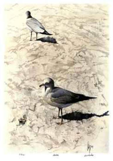 Gulls-Carl Arlen-Limited Edition
