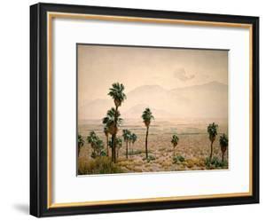 Palm Springs Desert by Gunnar Widforss