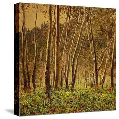 Sunlit Birches, 1924