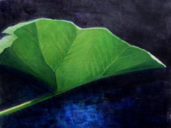 Gunnera Leaf-Lincoln Seligman-Giclee Print
