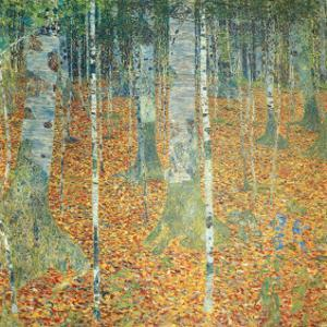 Birch Forest, c.1903 by Gustav Klimt
