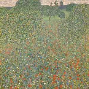 Meadow of Poppies, 1907 by Gustav Klimt