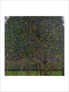 Pear Tree by Gustav Klimt