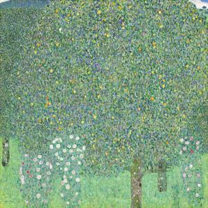Rosebushes under the Trees, ca. 1905 by Gustav Klimt