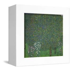 Roses under the trees. 1918 Canvas, 110x110 cm. by Gustav Klimt